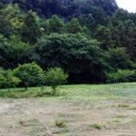 agriculturallandprice